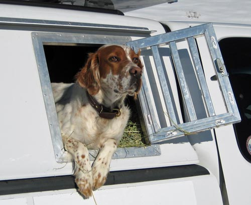 Wingworks Professional Quality Dog Box Truck Topper Aluminum
